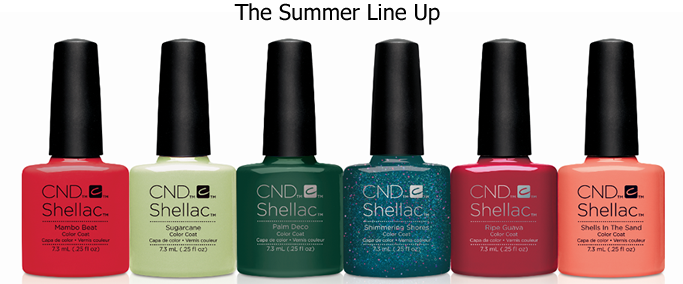 Shellac 2017 Summer Range